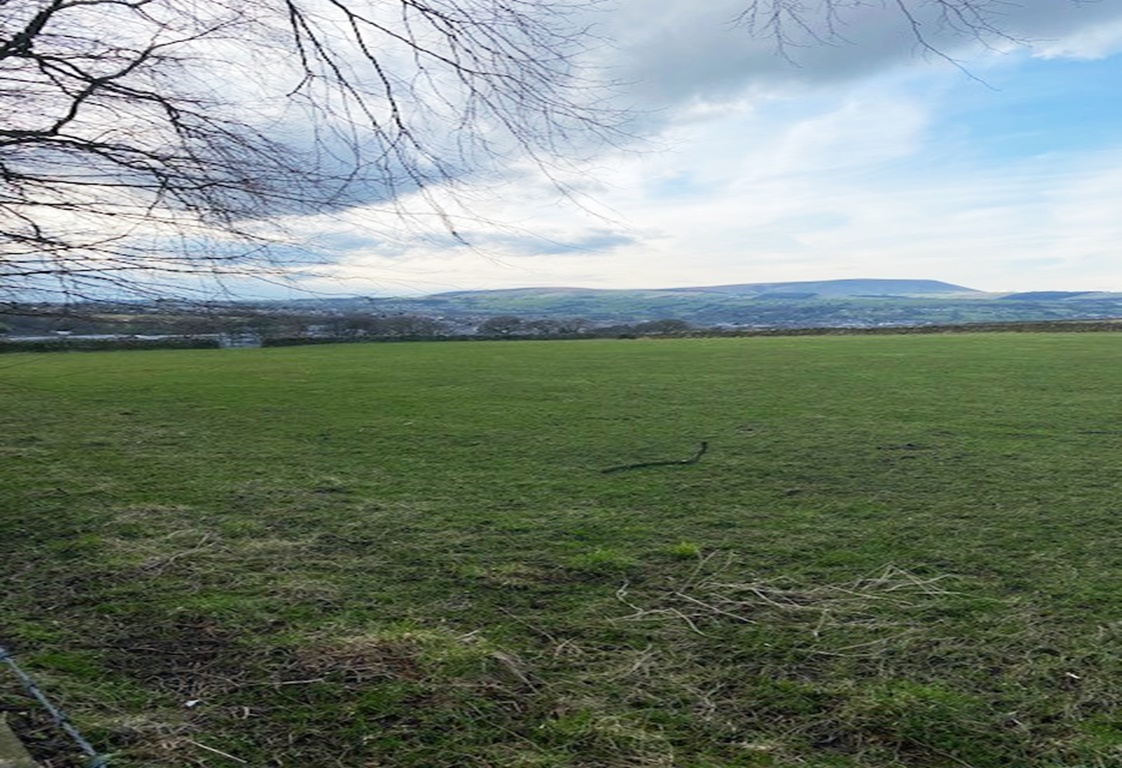 28 acres Agricultural Grassland, Southfield, Nelson