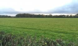 Land at Lisieux Hall, Whittle le Woods, Chorley