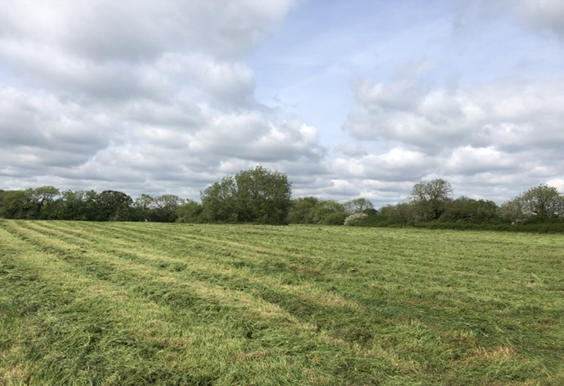 Land at Drumacre Lane West, Longton, Preston, PR4 4SB