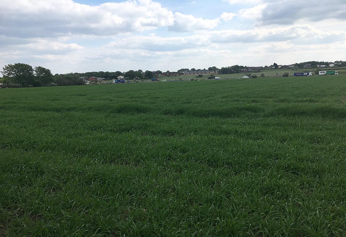 Ormstons Farm, Wingates Lane, Lostock, Bolton, BL5 3LT